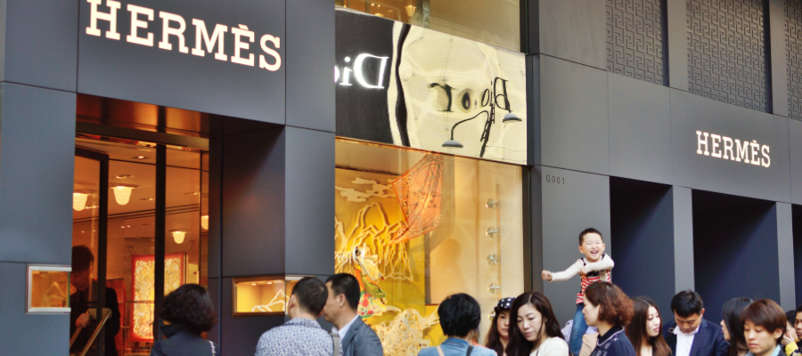 Is Hermes Bag and Hermes Bagpillow Worth Your Money? | Hanika Store Singapore